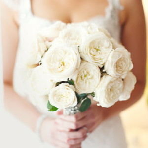 Gorgeous David Austin Roses